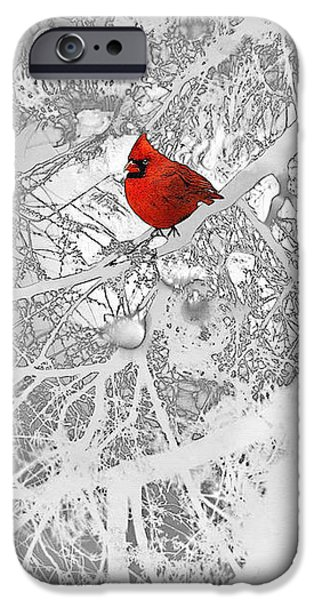 Animals Drawings iPhone Cases - Cardinal In Winter iPhone Case by Ellen Henneke