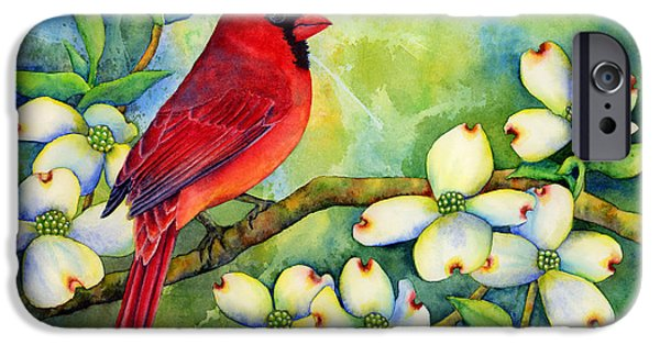 Birds iPhone Cases - Cardinal on Dogwood iPhone Case by Hailey E Herrera