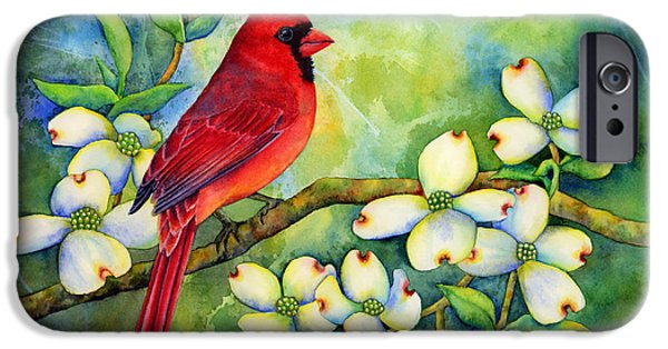 Cardinal iPhone Cases - Cardinal on Dogwood iPhone Case by Hailey E Herrera