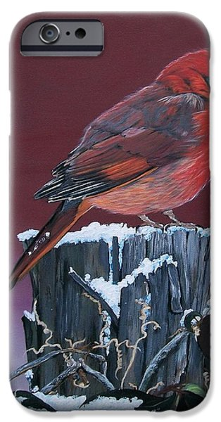 Botanical iPhone Cases - Cardinal Winter Songbird iPhone Case by Sharon Duguay