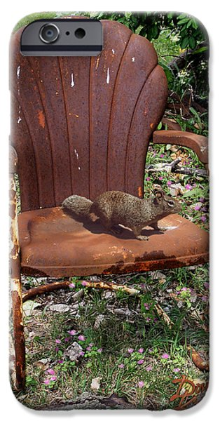 Lawn Chair iPhone Cases - Careful Where You Sit iPhone Case by Doug Kreuger