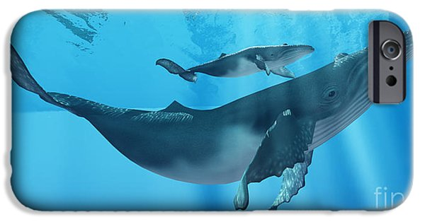 Young Digital Art iPhone Cases - Caring Mother Humpback iPhone Case by Corey Ford