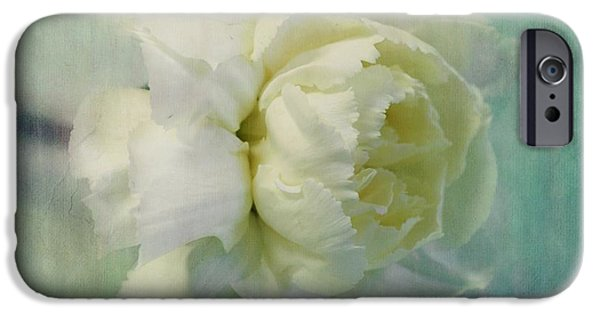 Flora Photographs iPhone Cases - Carnation iPhone Case by Priska Wettstein