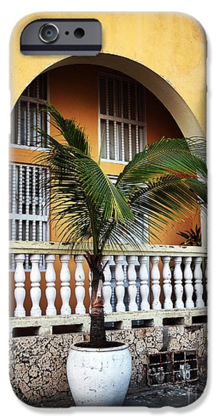 Spanish House iPhone Cases - Cartagena Palm iPhone Case by John Rizzuto