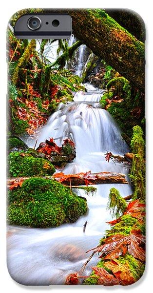 Randy Moss iPhone Cases - Cascade Creek iPhone Case by Randy Giesbrecht