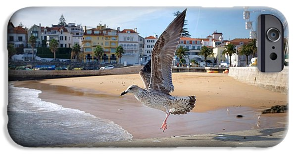 Sea Birds iPhone Cases - Cascais Seagulls iPhone Case by Carlos Caetano