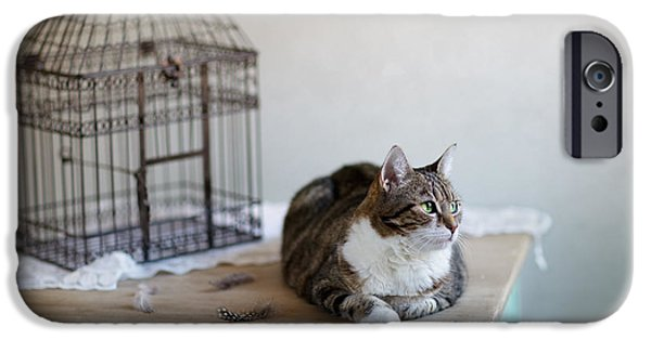 Fed Photographs iPhone Cases - Cat and Bird Cage iPhone Case by Nailia Schwarz
