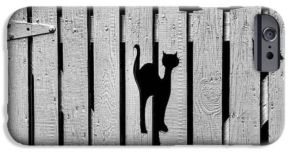 Cut-outs iPhone Cases - Cat and Mouse Fence Gate iPhone Case by Henry Kowalski