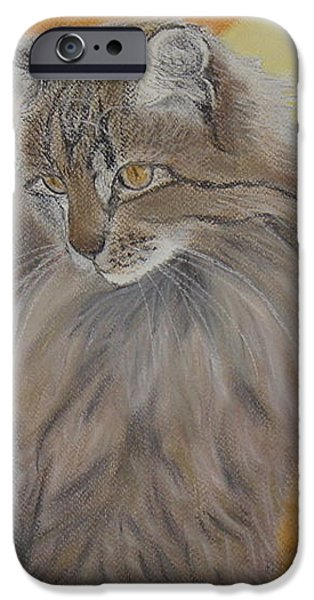 Cat and Sunset  iPhone Case by Cybele Chaves