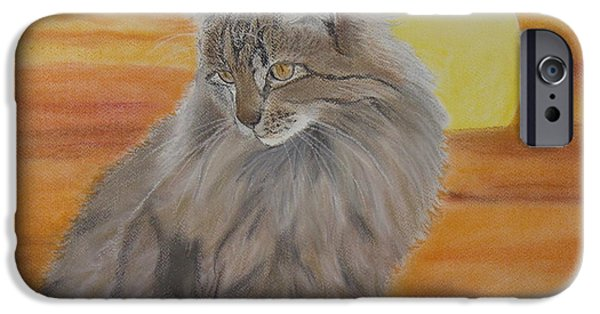 Pastel iPhone Cases - Cat and Sunset  iPhone Case by Cybele Chaves
