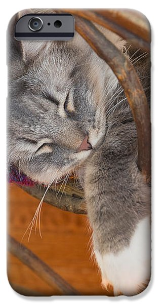 Cat asleep in a wooden rocking chair iPhone Case by Louise Heusinkveld