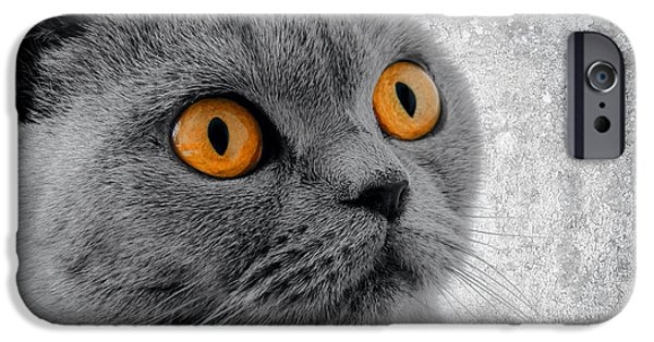 Adrenaline iPhone Cases - Cat Eyes iPhone Case by Daniel Hagerman
