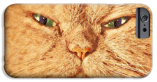 Gray Hair iPhone Cases - Cat face close up portrait. Painted effect iPhone Case by Michal Bednarek
