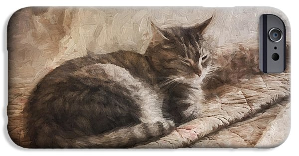 Carol Leigh iPhone Cases - Cat on the Bed Painterly iPhone Case by Carol Leigh