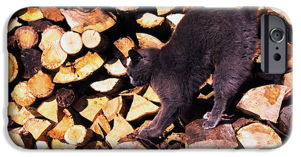 House Pet Digital Art iPhone Cases - Cat Stretching on Firewood iPhone Case by Thomas R Fletcher