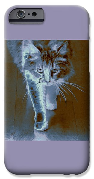 Cat Reflection iPhone Cases - Cat Walking iPhone Case by Ben and Raisa Gertsberg