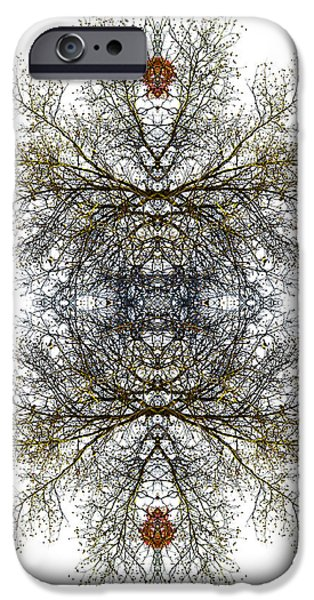 Nature Abstracts iPhone Cases - Cathedral Glass iPhone Case by Debra and Dave Vanderlaan