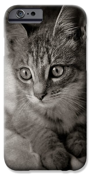 Sheets iPhone Cases - Cats Eyes #05 iPhone Case by Loriental Photography