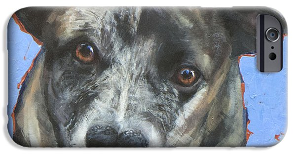 Cattle Dog iPhone Cases - Cattle Dog iPhone Case by Mary Medrano