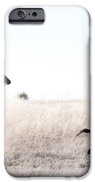 Cattle Drive iPhone Case by Cindy Singleton