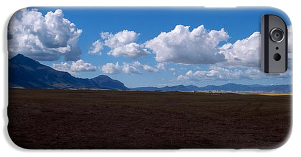 Cape Town iPhone Cases - Cattle Pasture, Highway N7 From Cape iPhone Case by Panoramic Images