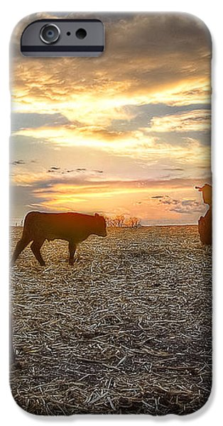 Cattle Sunset 2 iPhone Case by Thomas Zimmerman