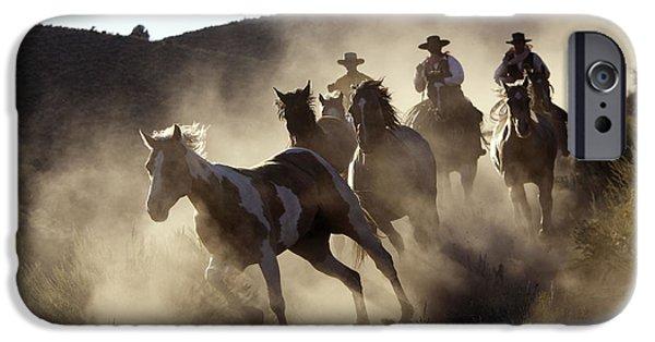 American Quarter Horse iPhone Cases - Cattlemen Herding Quarter Or Paint iPhone Case by M. Watson