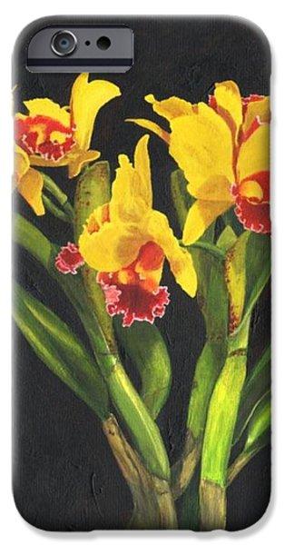 Cattleya Orchid iPhone Case by Richard Harpum