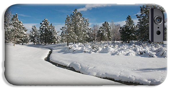 Wintertime iPhone Cases - Caughlin Creek Snowfall iPhone Case by Vinnie Oakes