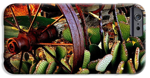 Rust iPhone Cases - Caught in a Cactus Patch-SOLD iPhone Case by Antonia Citrino