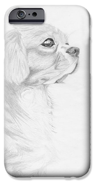 Pet iPhone Cases - Cavalier King Charles Spaniel iPhone Case by David Smith