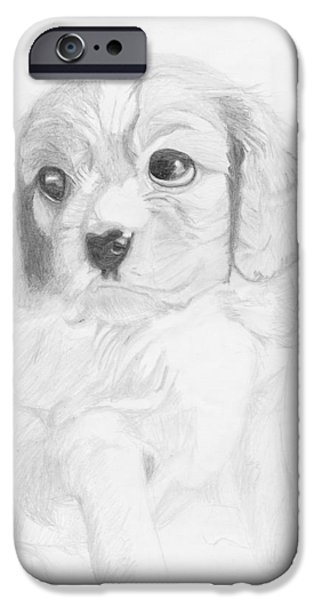 Cavalier iPhone Cases - Cavalier King Charles Spaniel Puppy iPhone Case by David Smith