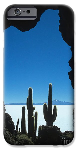 Cave and cacti iPhone Case by James Brunker