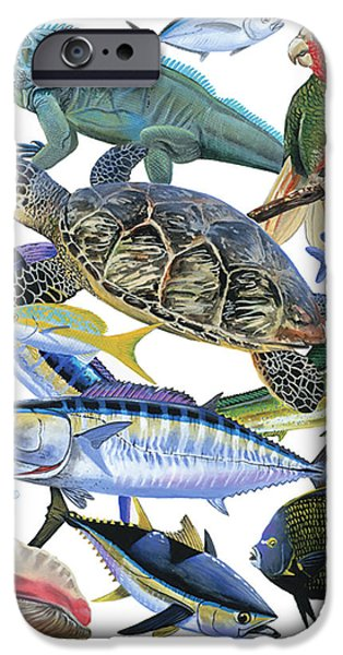 Iguana iPhone Cases - Cayman collage iPhone Case by Carey Chen