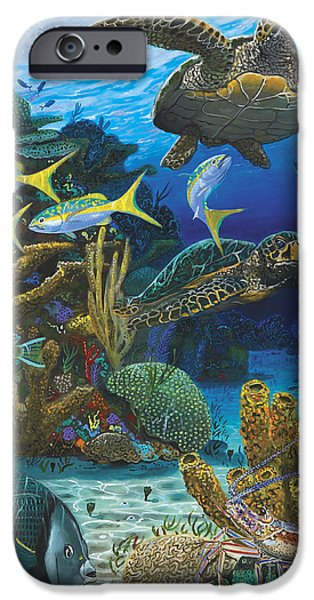 Angel Blues iPhone Cases - Cayman Turtles Re0010 iPhone Case by Carey Chen