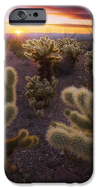 Celebration iPhone Case by Peter Coskun