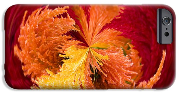 July iPhone Cases - Celosia on Fire iPhone Case by Anne Gilbert