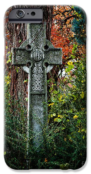 The Resurrection Of Christ iPhone Cases - Celtic Cross in Foliage iPhone Case by Sonja Quintero