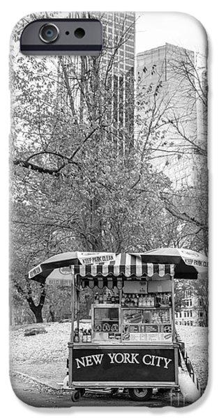 Vendor iPhone Cases - Central Park Vendor iPhone Case by Edward Fielding