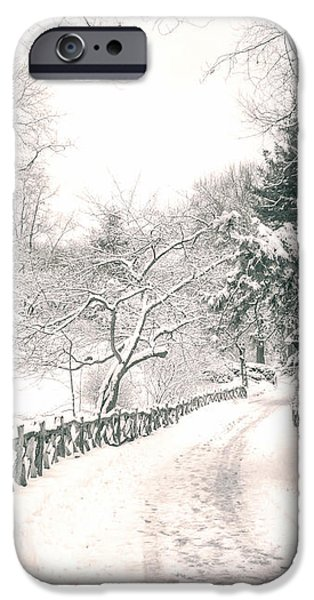 Central Park Winter Landscape iPhone Case by Vivienne Gucwa