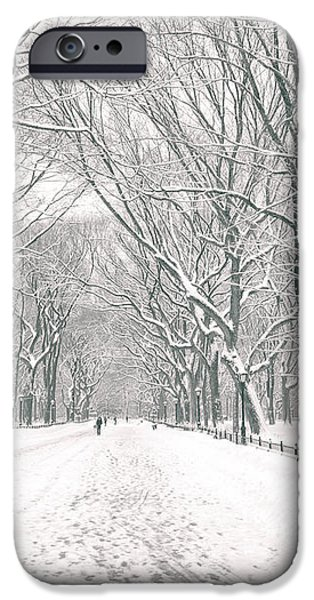 Central Park Winter - Poet's Walk in the Snow - New York City iPhone Case by Vivienne Gucwa