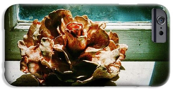 Rose Ceramics iPhone Cases - Ceramic Rose in Studio Window iPhone Case by Joan-Violet Stretch