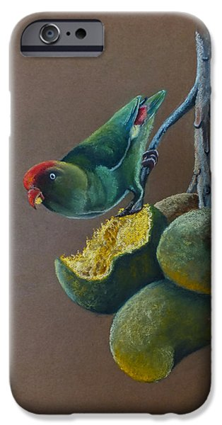 Fauna Pastels iPhone Cases - Ceylon Hanging Parrot iPhone Case by Nirosh Perera