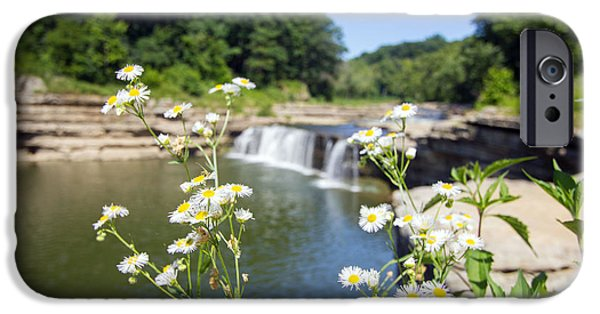 Indiana Flowers iPhone Cases - Chamomile at The Falls iPhone Case by Jackie Novak