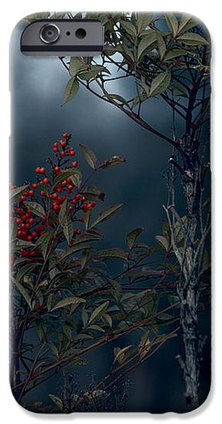 Change of Season iPhone Case by Bonnie Bruno