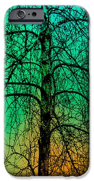 Change of Seasons Number Tw0 iPhone Case by Bob Orsillo