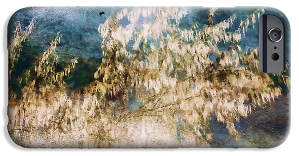 Multimedia iPhone Cases - Change of Weather iPhone Case by Kathy Bassett
