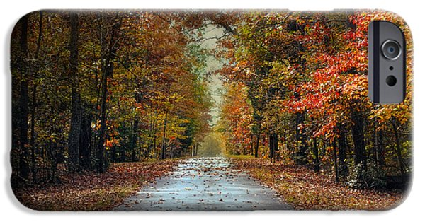 Autumn Scenes iPhone Cases - Changing Season 2 - Autumn Landscape iPhone Case by Jai Johnson