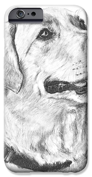Recently Sold -  - Chocolate Lab iPhone Cases - Charcoal Drawing Yellow Lab in Profile iPhone Case by Kate Sumners