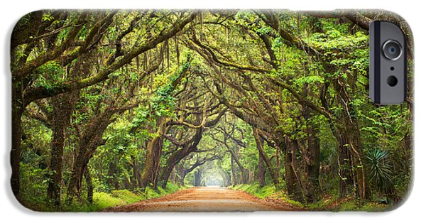 Green iPhone Cases - Charleston SC Edisto Island - Botany Bay Road iPhone Case by Dave Allen